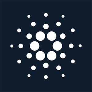 Cardano kopen met iDEAL - Creditcard - SEPA of Bancontact
